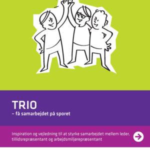 Trio – få samarbejdet på sporet